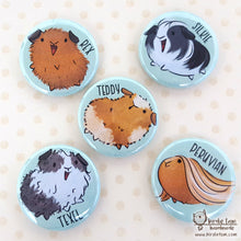 Load image into Gallery viewer, Cute guinea pig magnets and pins with different breeds