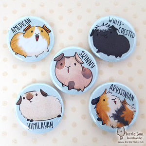 Cute guinea pig magnets and pins of different breeds
