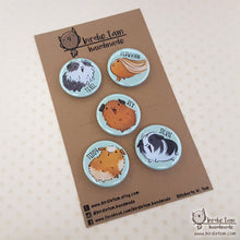 Load image into Gallery viewer, Guinea pig magnet set with packaging