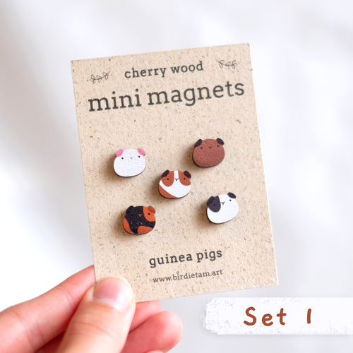 Mini guinea pig magnets