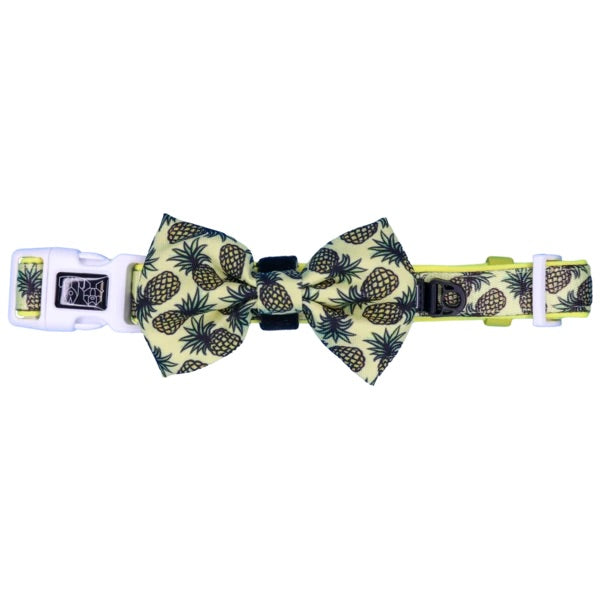 Dog Collar & Bow Tie