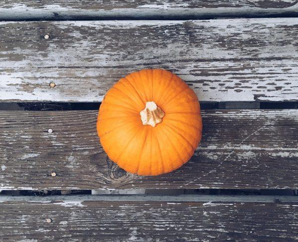 Go-To Tips: Fall Activities and Treats