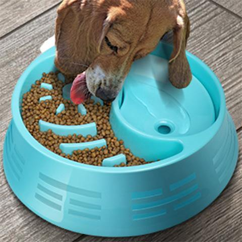 Slow Feeder Dog Bowls Food and Water Dispenser for Dogs