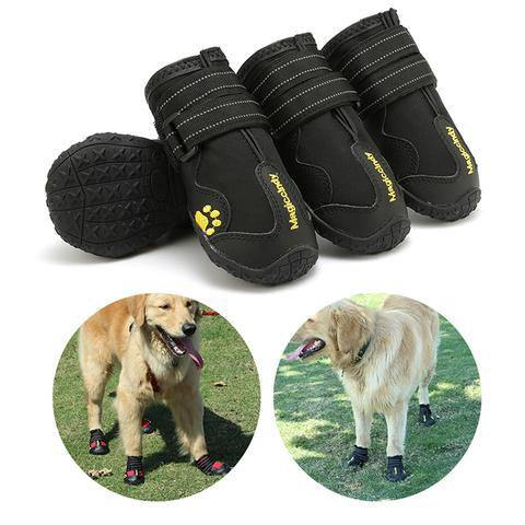 Pet Shoes For Dog Booties, Waterproof Dog Boots & Shoes For Summer Winter