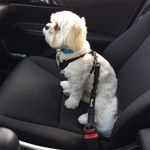 Adjustable Pet Dog Cat Car Seat Belt