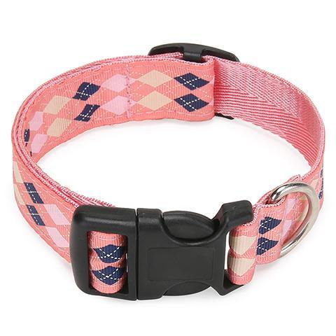 Small and Medium Dog collar cat