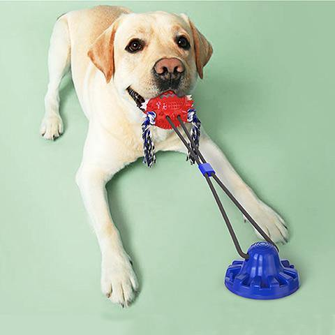 【30% Off】Dog Chew Toothbrush Toys Resistant Bite Ball