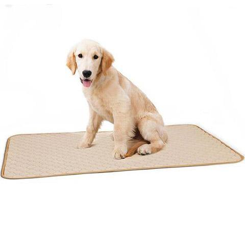 Washable Pee Pads for Dogs, Fast Absorbing & Waterproof