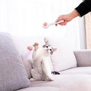 Multifunctional and Retractable Feather Cat Teaser Pet/Cat Interactive Toy