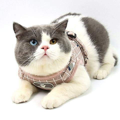 Dog Cat Plaid Pet Harness