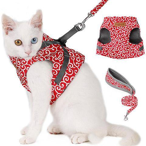 Puppy Cat Harness and Leash for Walking