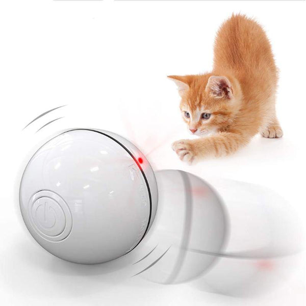 Automatic Rolling Ball for Cats/Kitten with LED Light, USB Rechargeable