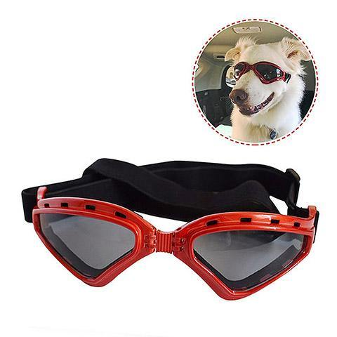 Large Dog Eye Protection Goggles Sunglasses