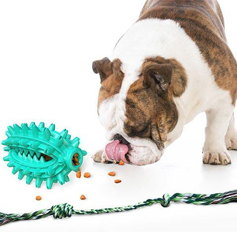 Dog Molar Ball Chew Toy With Rope