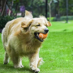 Load image into Gallery viewer, Squeaky Dog Rubber Rugby Chew Toy