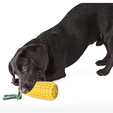 Corn-shaped Dog Cleaning Tooth Molar Stick Squeak Dog Toy
