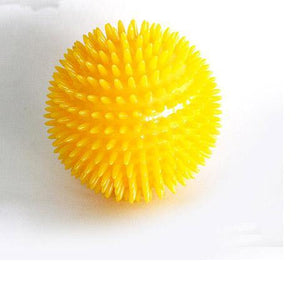 Squeaky Chewing Spiky Dog Toy ball
