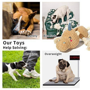 Pet Plush Toy Squeaky Dog Chew Toys