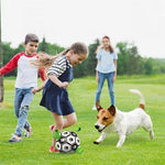 Load image into Gallery viewer, 【30% Off】Dog Soccer Ball with Grab Tabs Interactive Dog Trainning Toy