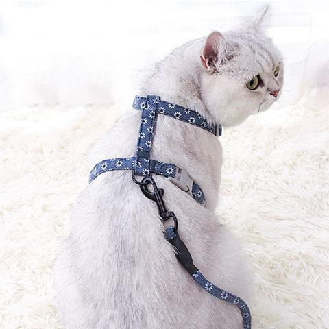 Cat Harness and Leash Adjustable