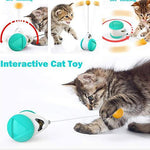 Load image into Gallery viewer, Interactive Cat Toys Catnip Ball Balance Swing Car Toy for Pet
