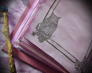 Owl Book Of Shadows