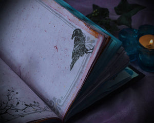 Crow Book Of Shadows