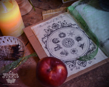 Load image into Gallery viewer, Tree Of Life Book Of Shadows