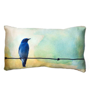 Borrowed Feathers Pillow from the Fable Pillow Collection | Multiple Sizes Available