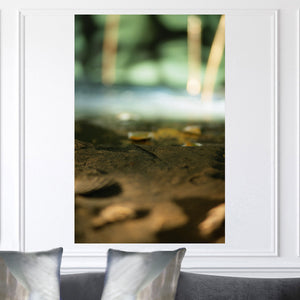 """Earth"" Limited Edition Photographic Print on Canvas"