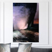 "Load image into Gallery viewer, ""Pastel"" Limited Edition Photographic Print on Canvas"