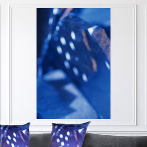 """Presto"" Limited Edition Photographic Print on Canvas"