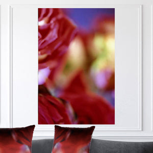 """Rose Darling"" Limited Edition Photographic Print on Canvas"