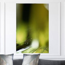 "Load image into Gallery viewer, ""Wisdom"" Limited Edition Photographic Print on Canvas"