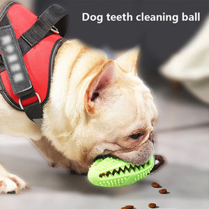 Dog Rubber Ball Interactive Food Dispenser Puppy Chew Toy Dog Toothbrush Pet Molar Bite-Resistant Clean Teeth Pet Doy Toys
