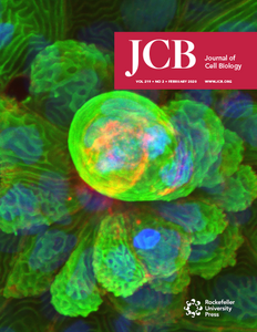 JOURNAL OF CELL BIOLOGY