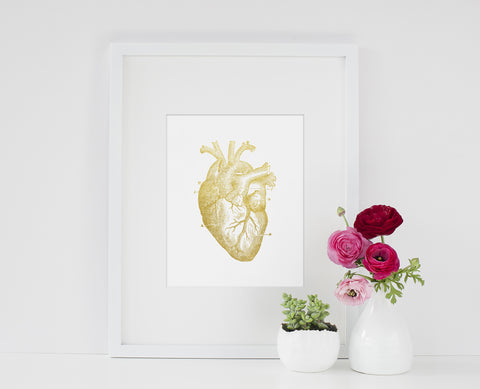 Gold Anatomical Heart Print - Choose Size