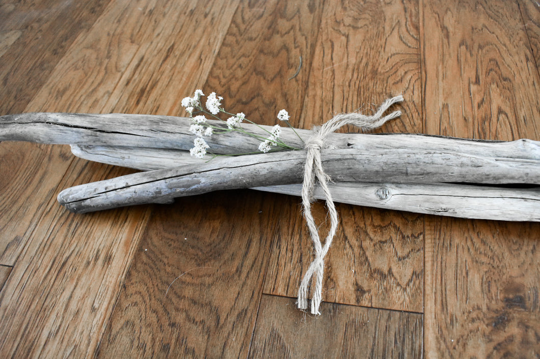 California Coast Driftwood Bundle - Medium