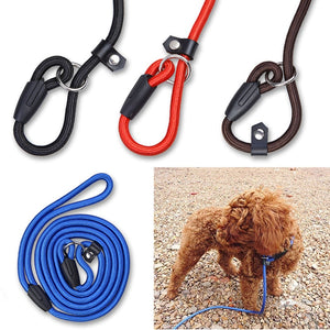 High Quality Solid Nylon All-Seasons Multi-Colored Pet Dog Halter Leash Rope - The Dog House