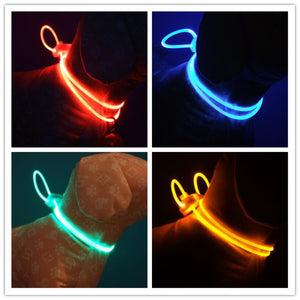 High Quality 1 Pcs Multi-color LED Pet Collar - The Dog House