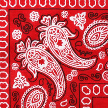 CRUZ - Red Traditional Paisley