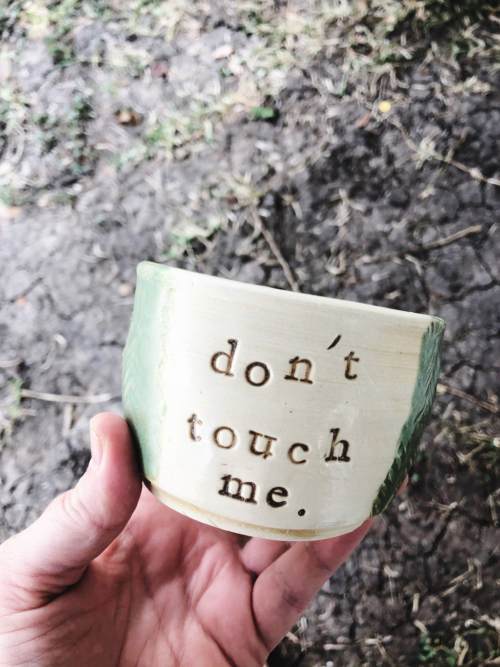 Don't Touch Me Cactus Pot - Plants and Pots Shop