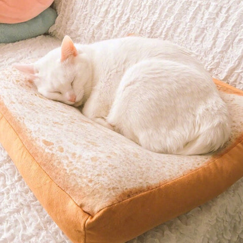 Toast Bread Cat Dog Mats Soft Sofa Small Cat Beds