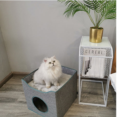 Summer Cat House Top Quality Cave For Cats Indoor Tent Pet Cozy House