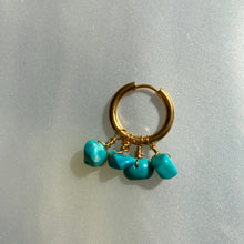 Load image into Gallery viewer, Tropical Reef Earring