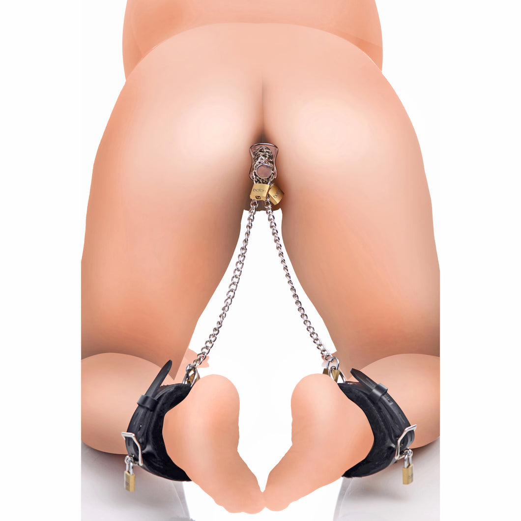 Master Series Ankles to Anal Plug Locking Bondage Kit AF890,Ankle and Wrist Restraints