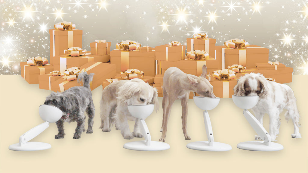 JoviBowl - The Ultimate Holiday Gift For Pets