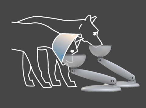 Raised dog bowl graphic