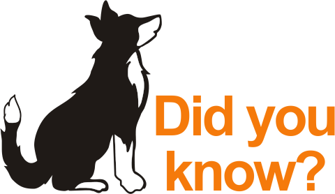 Canine Biologics Did You Know