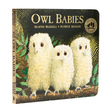 Load image into Gallery viewer, Owl Babies